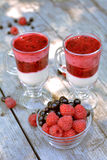 Het hoogtepunt van de glasvaas van geurige rode framboos en braambes dichtbij smakelijke yoghurt met gemengde bessen op grijze li Stock Afbeeldingen