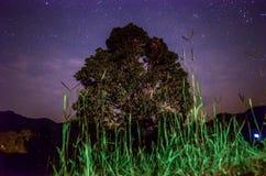 Het hoogtepunt van de hemel van sterren Royalty-vrije Stock Afbeeldingen