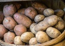 Het hoogtepunt van de mand van aardappels Stock Foto
