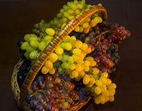 Het hoogtepunt van de mand van druiven royalty-vrije stock afbeelding