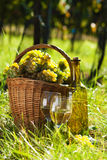Het hoogtepunt van de mand van druiven en wijn Stock Foto's