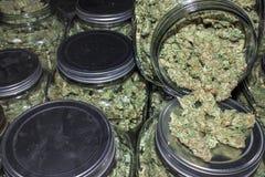 Het Hoogtepunt van glaskruiken van Marihuanaknoppen die uit morsen royalty-vrije stock fotografie