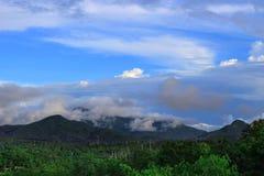 Het hoogtepunt van het berglandschap van mist Stock Foto
