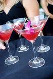 Het hoogtepunt van het dienblad van martini die wordt gediend stock fotografie