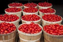 Het hoogtepunt van manden van tomaten Stock Foto's