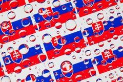 Het hoogtepunt van regendalingen van Slowaakse vlaggen Stock Foto's