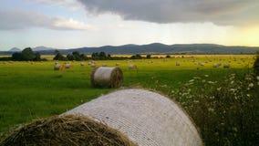 Het hooi rolt gebied in zonsondergang 2/2 royalty-vrije stock fotografie