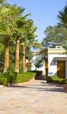 Het hotel en de palmen van de toerist royalty-vrije stock afbeeldingen