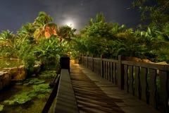 Het hotel van de luxe bij nacht Stock Afbeelding