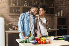 Het houden van van Afrikaanse vrouwen voedende echtgenoot terwijl het koken royalty-vrije stock afbeelding