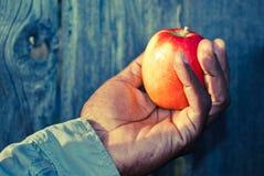 Het houden van een appel in een hand Stock Fotografie