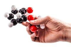 Het houden van een chemische structuurmodel royalty-vrije stock foto
