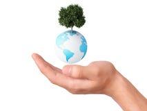 Het houden van een een aardebol en boom in zijn hand Stock Afbeeldingen