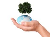 Het houden van een een aardebol en boom in zijn hand Stock Foto's