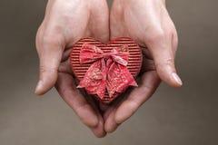 Het houden van een hart gevormde doos Stock Afbeeldingen