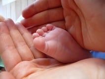 Het houden van een uiterst kleine babyvoet Royalty-vrije Stock Afbeelding