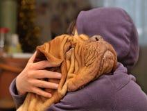 Het houden van een van Hond Royalty-vrije Stock Fotografie
