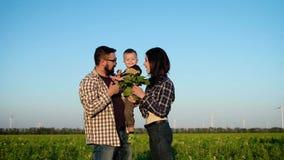 Het houden van oudersspel met hun kind op een gebied De vader houdt de jongen in handen, terwijl de moeder hem een zonnebloem too stock footage