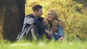 Het houden van paarzitting onder boom, die datum hebben in openlucht, picknick in parkgeluk stock videobeelden