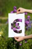 Het houden van papercut miniatuureuro over bloeiende bloemen Royalty-vrije Stock Foto's
