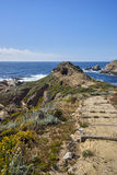 Het hout en het zand slepen rond winden naar de Vreedzame Oceaan waar de oceaan de hemel ontmoet Royalty-vrije Stock Afbeeldingen
