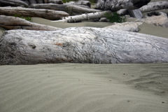 Het hout en het zand van de afwijking Royalty-vrije Stock Fotografie