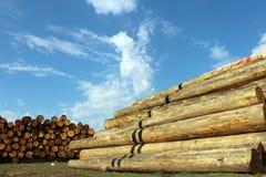 Het hout opent het depot het programma Royalty-vrije Stock Foto's