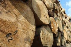 Het hout opent het depot het programma Royalty-vrije Stock Afbeelding