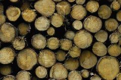 Het hout van Cutted Royalty-vrije Stock Foto