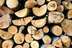 Het hout van de brand Stock Foto