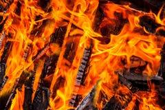 Het hout van de brand Stock Fotografie