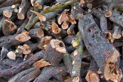 Het hout van de brand voor de winter Stock Afbeeldingen