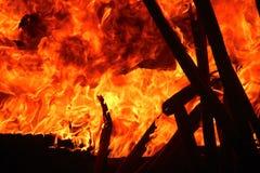 Het hout van de brandwond royalty-vrije stock foto's