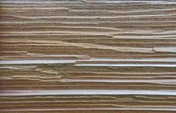 Het hout van de ceder Royalty-vrije Stock Foto's