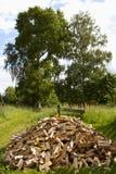 Het hout van de karbonade Stock Fotografie