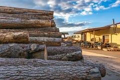 Het hout van de premiepijnboom voor meubilairproductie stock afbeelding