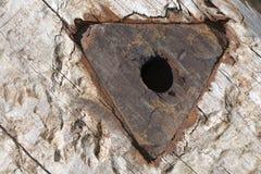 Het hout van de spoorwegdwarsbalk bevlekte geoli?d Royalty-vrije Stock Foto's