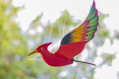 Het hout van de Vogel Royalty-vrije Stock Afbeeldingen
