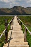 Het hout van de wegbrug aan meer stock fotografie
