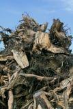 Het hout van het afval Stock Fotografie