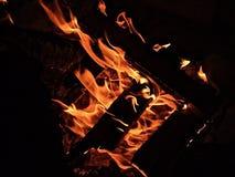Het houten kampvuur branden in dark stock fotografie