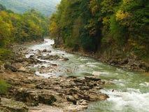 Het houten landschap van de berg (de herfst) Royalty-vrije Stock Afbeeldingen