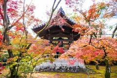 Het Houten Paviljoen in Autumn Garden Royalty-vrije Stock Afbeelding