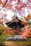 Het Houten Paviljoen in Autumn Garden Stock Foto's