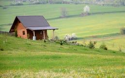 Het houten plattelandshuisje van het land in het midden van weiden in de lente Stock Afbeelding