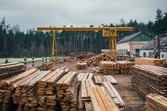 Het houten registreren, sorteren, vervoer en verwerking op zaagmolen stock afbeelding