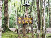 Het houten teken in Thaise Taal betekent ` geen hevig lawaai ` maakt stock afbeeldingen