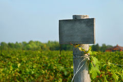 Het houten teken van de wijngaard Stock Afbeelding