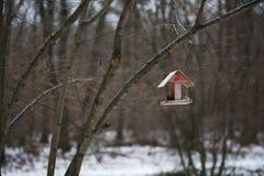 Het houten Vogelhuis hangt op een boom royalty-vrije stock afbeeldingen