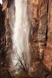 Het huilen van Canion Zion Utah van de Waterval van de Rots de Rode royalty-vrije stock foto